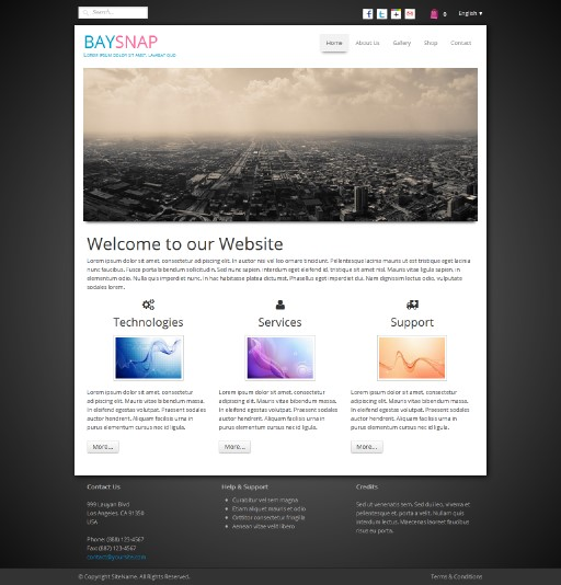 baysnap - responsive website template built with TOWeb, the responsive website creation software