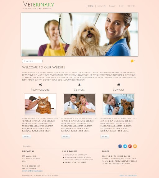 veterinary - responsive website template built with TOWeb, the responsive website creation software